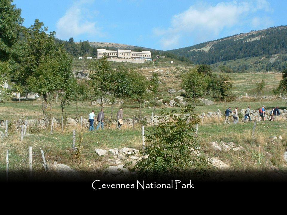 Cevennes National Park - invertebrate surveys