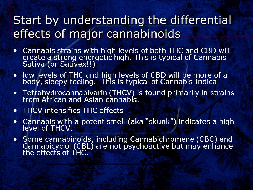Start by understanding the differential effects of major cannabinoids Cannabis strains with high levels of both THC and CBD will create a strong energ