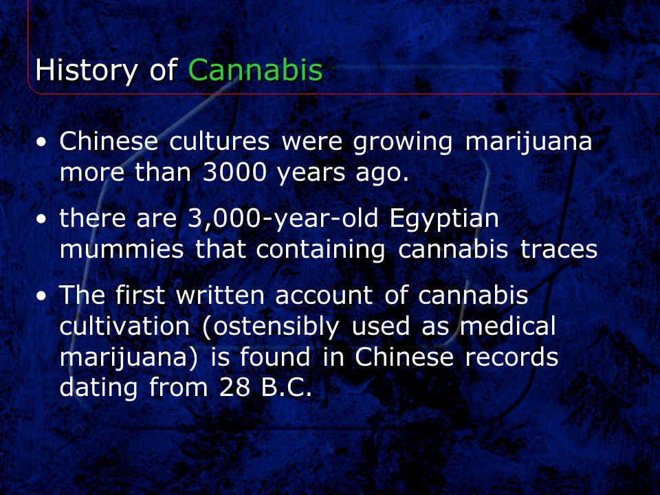 History of Cannabis Chinese cultures were growing marijuana more than 3000 years ago. there are 3,000-year-old Egyptian mummies that containing cannab