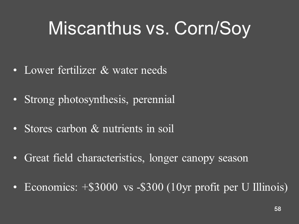 58 Miscanthus vs. Corn/Soy Lower fertilizer & water needs Strong photosynthesis, perennial Stores carbon & nutrients in soil Great field characteristi