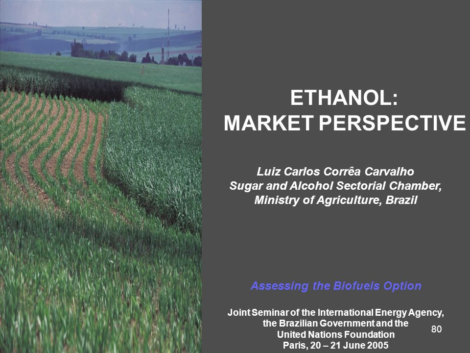 80 ETHANOL: MARKET PERSPECTIVE Luiz Carlos Corrêa Carvalho Sugar and Alcohol Sectorial Chamber, Ministry of Agriculture, Brazil Assessing the Biofuels