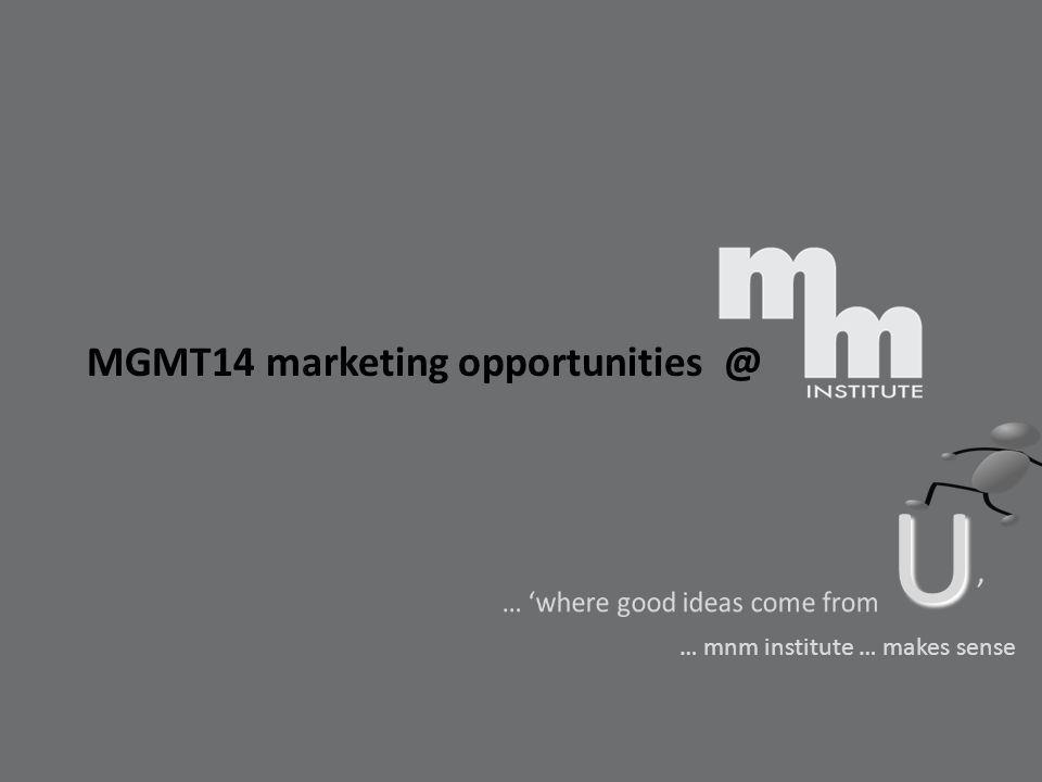 MGMT14 marketing opportunities @ U U … mnm institute … makes sense