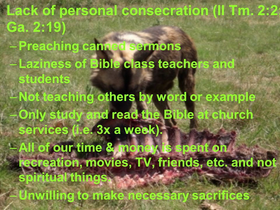 Lack of personal consecration (II Tm. 2:2; Ga.