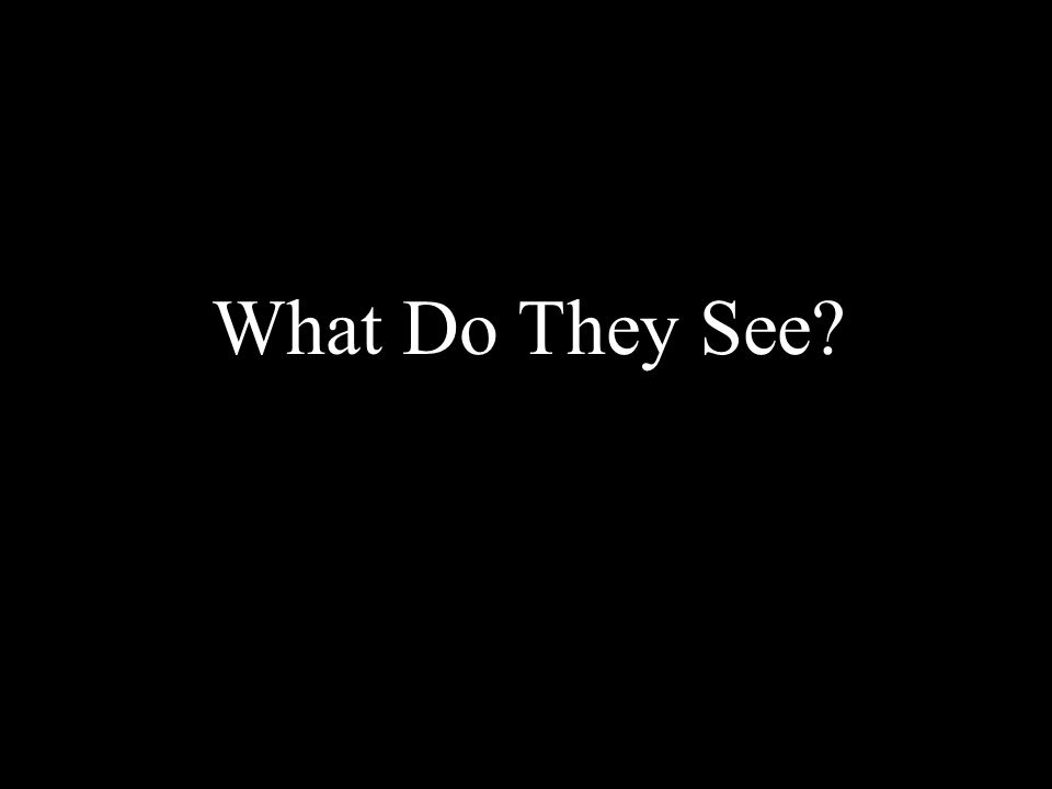 What Do They See