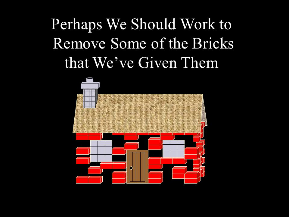 Perhaps We Should Work to Remove Some of the Bricks that Weve Given Them