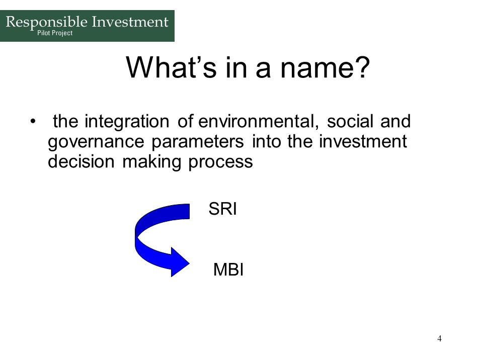 4 Whats in a name? the integration of environmental, social and governance parameters into the investment decision making process SRI MBI