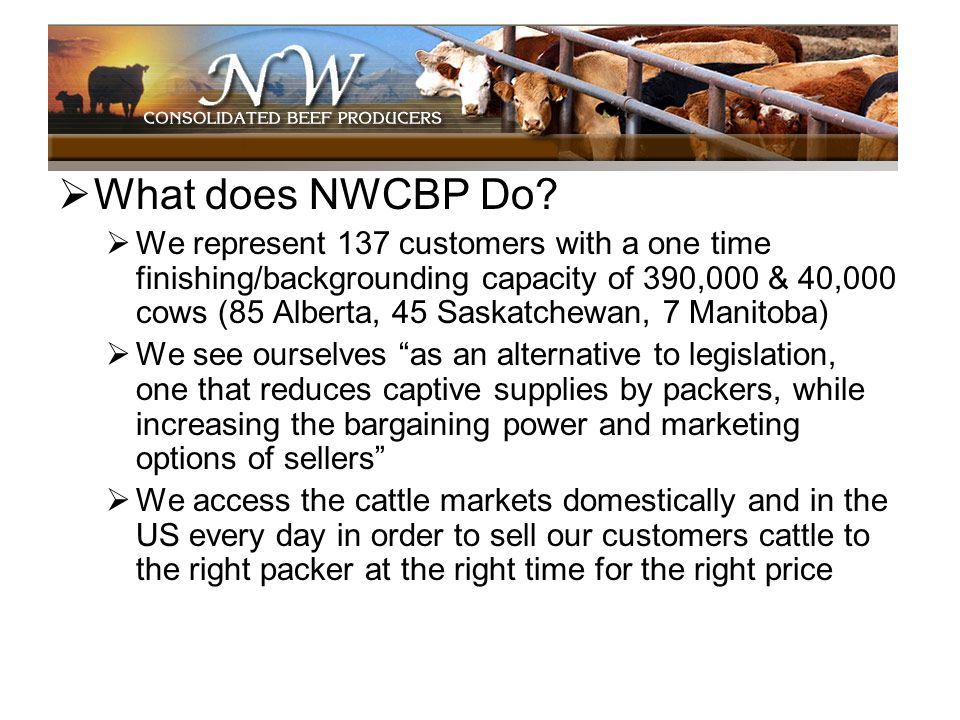 What does NWCBP Do? We represent 137 customers with a one time finishing/backgrounding capacity of 390,000 & 40,000 cows (85 Alberta, 45 Saskatchewan,