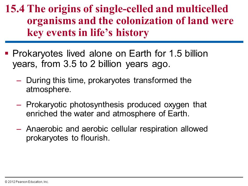 Prokaryotes lived alone on Earth for 1.5 billion years, from 3.5 to 2 billion years ago. –During this time, prokaryotes transformed the atmosphere. –P