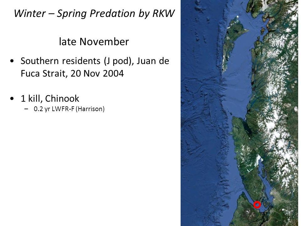 Southern residents (J pod), Juan de Fuca Strait, 20 Nov 2004 1 kill, Chinook –0.2 yr LWFR-F (Harrison) Winter – Spring Predation by RKW late November