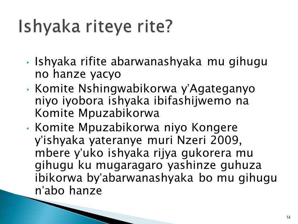 Ishyaka rifite abarwanashyaka mu gihugu no hanze yacyo Komite Nshingwabikorwa yAgateganyo niyo iyobora ishyaka ibifashijwemo na Komite Mpuzabikorwa Ko