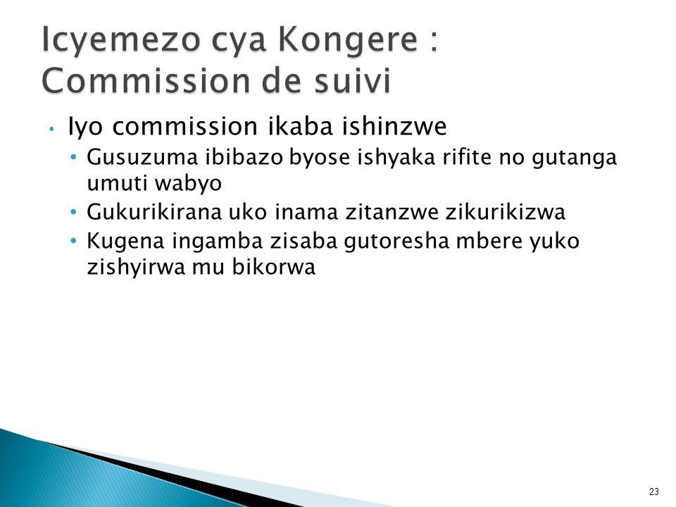 Iyo commission ikaba ishinzwe Gusuzuma ibibazo byose ishyaka rifite no gutanga umuti wabyo Gukurikirana uko inama zitanzwe zikurikizwa Kugena ingamba