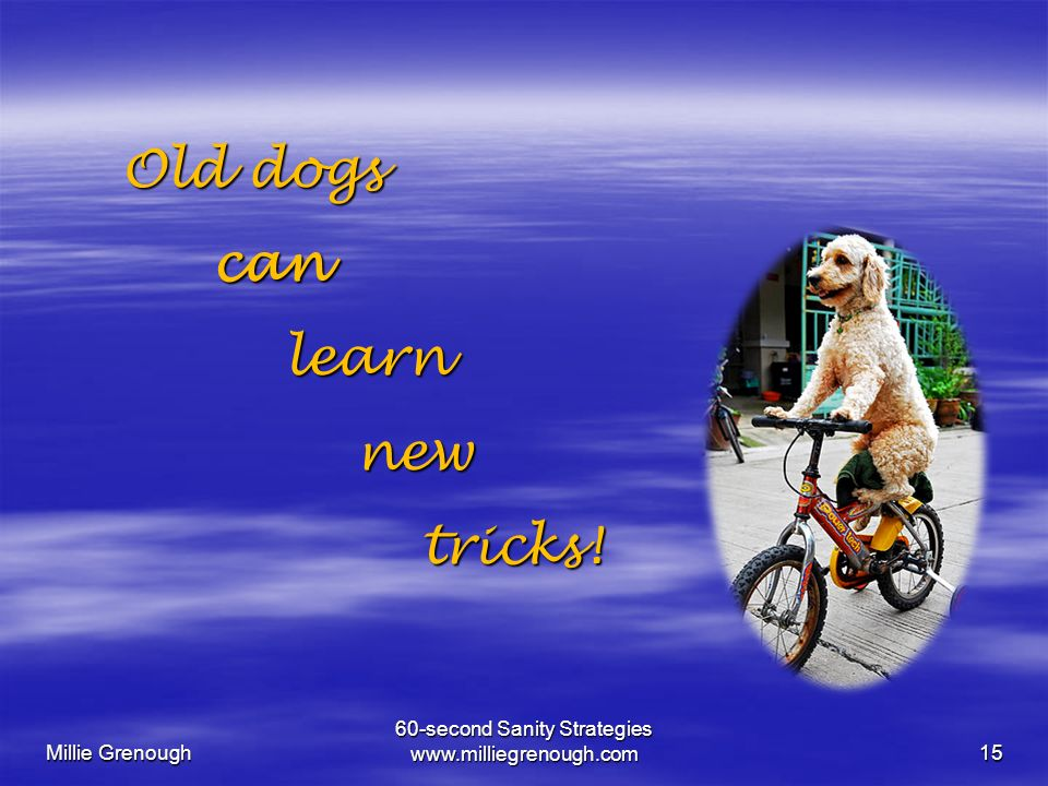 Millie Grenough 60-second Sanity Strategies   Old dogs Old dogs can can learn learn new new tricks.