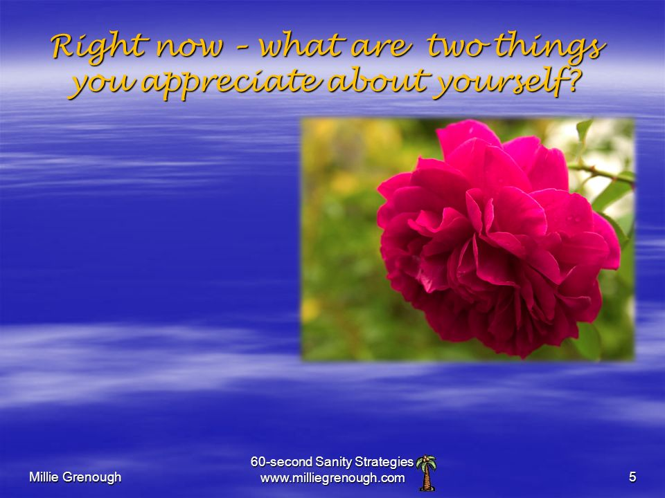 Millie Grenough 60-second Sanity Strategies www.milliegrenough.com5 Right now – what are two things you appreciate about yourself?