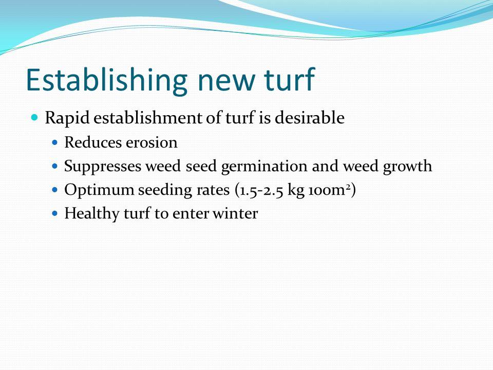 Establishing new turf Rapid establishment of turf is desirable Reduces erosion Suppresses weed seed germination and weed growth Optimum seeding rates