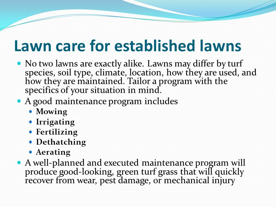 Lawn care for established lawns No two lawns are exactly alike. Lawns may differ by turf species, soil type, climate, location, how they are used, and