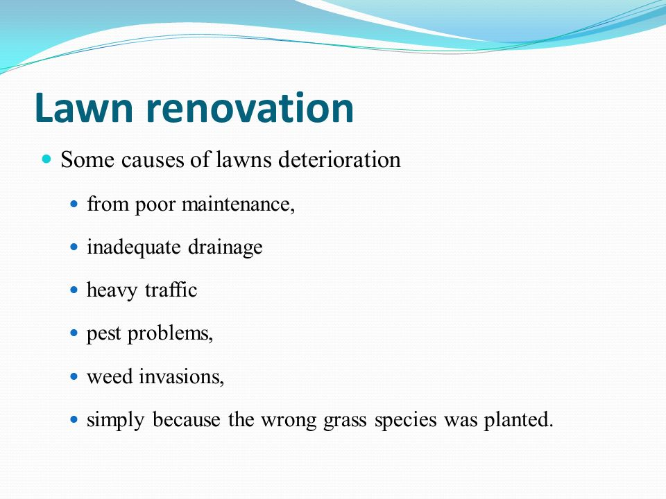 Lawn renovation Some causes of lawns deterioration from poor maintenance, inadequate drainage heavy traffic pest problems, weed invasions, simply beca