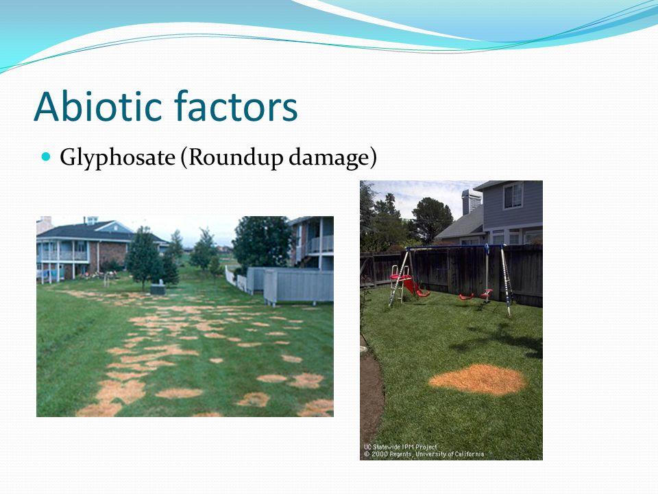 Abiotic factors Glyphosate (Roundup damage)