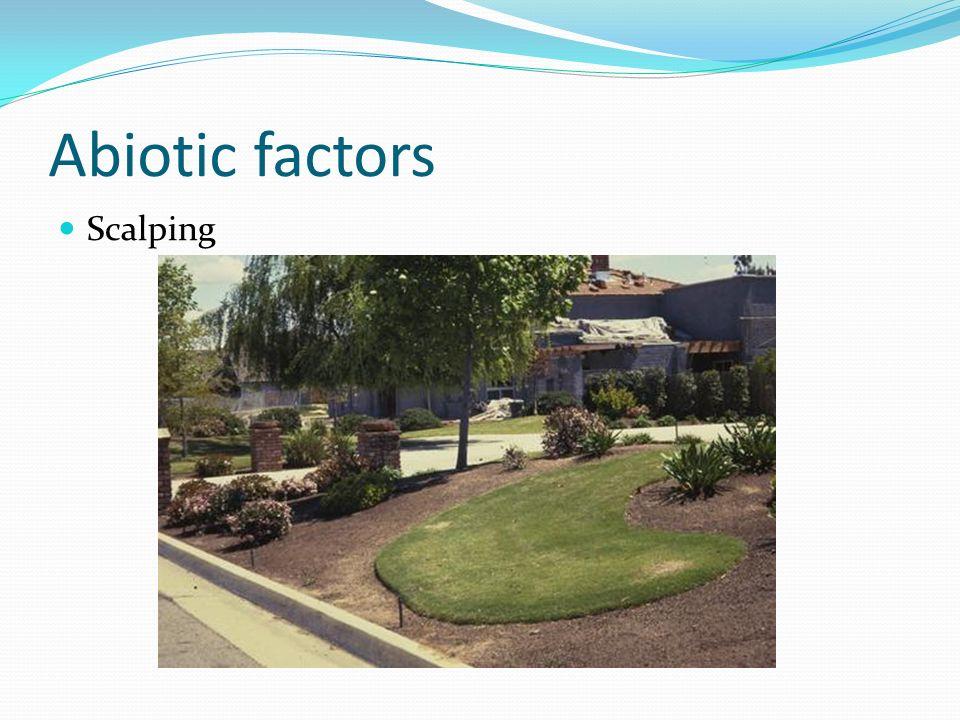 Abiotic factors Scalping
