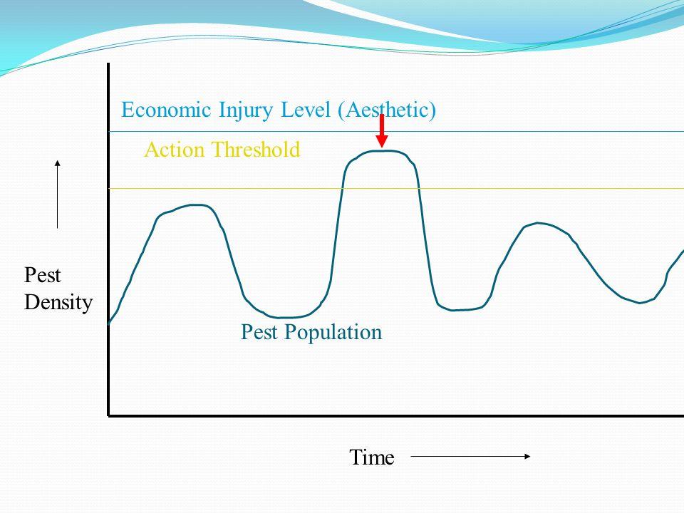 Time Pest Density Economic Injury Level (Aesthetic) Action Threshold Pest Population