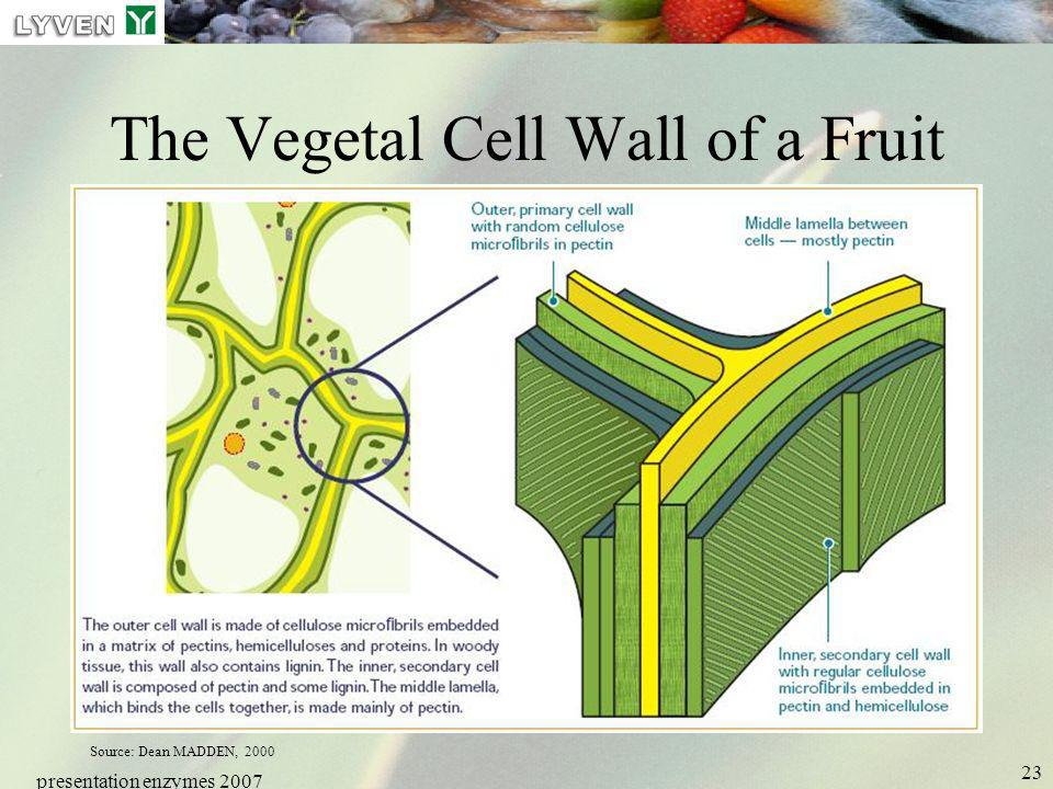 presentation enzymes 2007 23 The Vegetal Cell Wall of a Fruit Source: Dean MADDEN, 2000