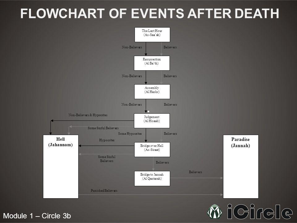 Module 1 – Circle 3b FLOWCHART OF EVENTS AFTER DEATH Believers The Last Hour (As-Saaah) Resurrection (Al Bath) Assembly (Al Hashr) Judgement (Al Hisaa