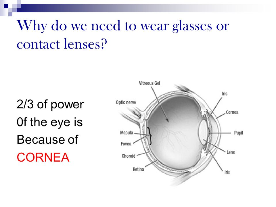 Why do we need to wear glasses or contact lenses? 2/3 of power 0f the eye is Because of CORNEA