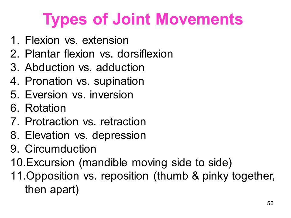 55 Synovial Joints