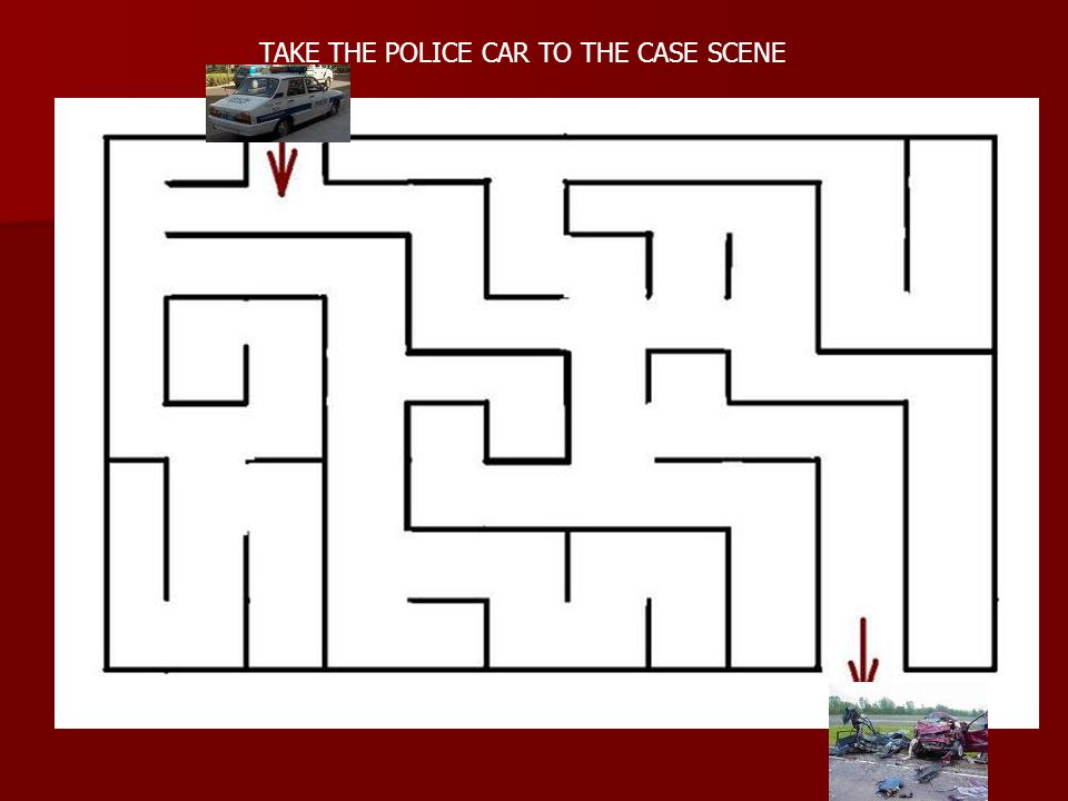 TAKE THE POLICE CAR TO THE CASE SCENE