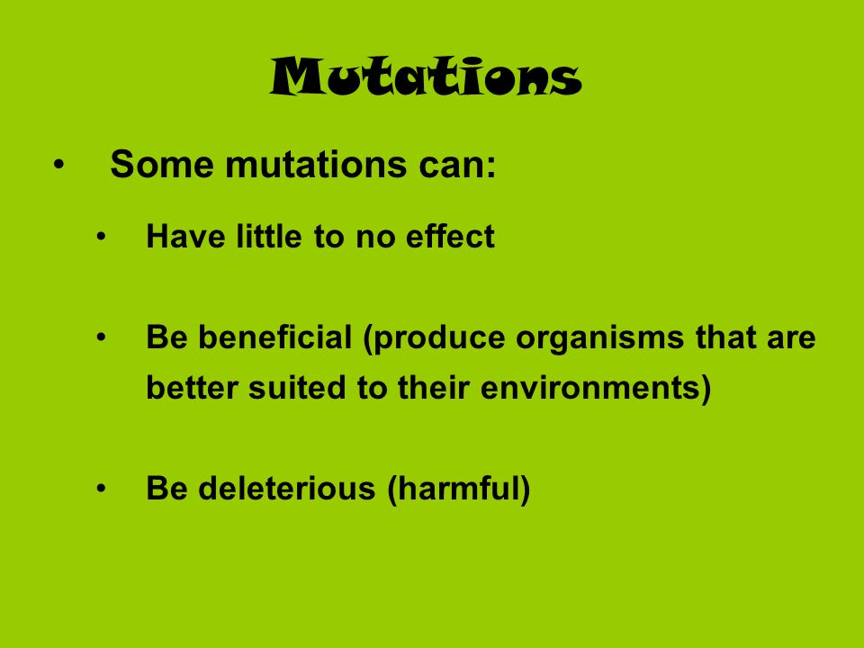 Mutations Some mutations can: Have little to no effect Be beneficial (produce organisms that are better suited to their environments) Be deleterious (