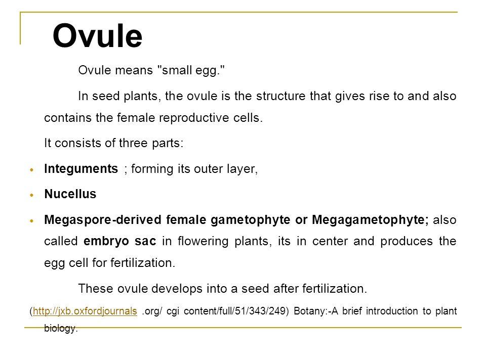 Ovule Ovule means
