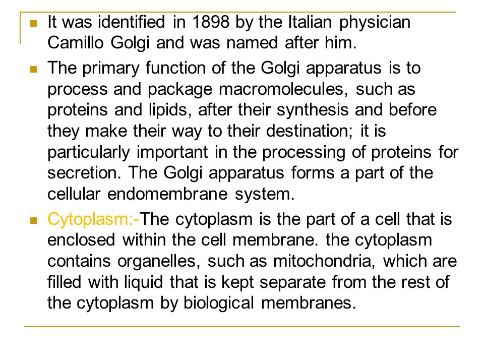 It was identified in 1898 by the Italian physician Camillo Golgi and was named after him. The primary function of the Golgi apparatus is to process an