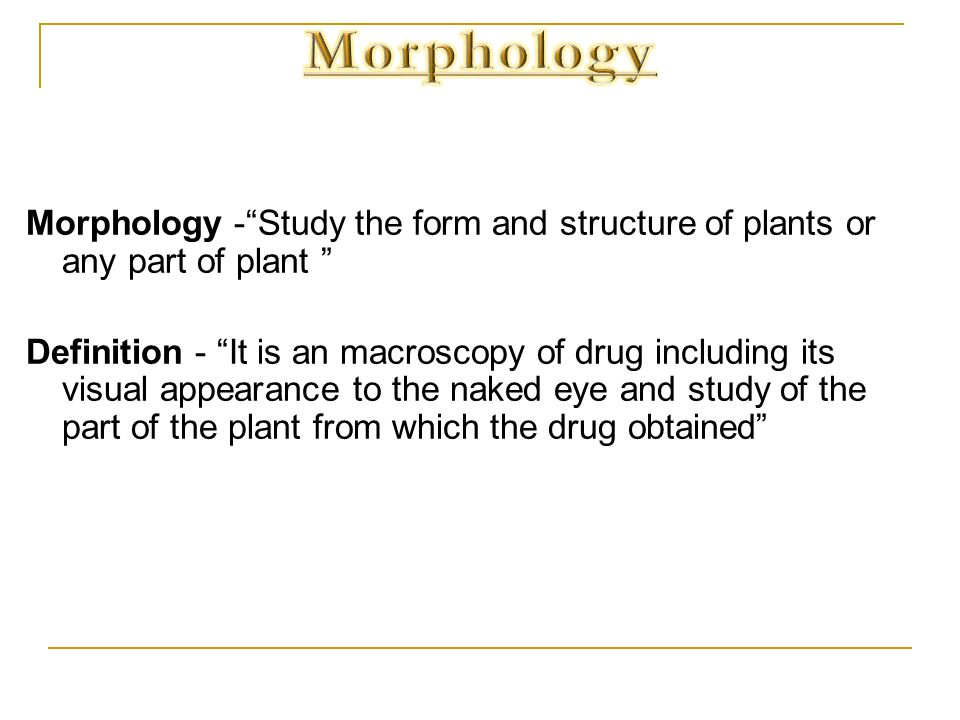 Morphology -Study the form and structure of plants or any part of plant Definition - It is an macroscopy of drug including its visual appearance to th