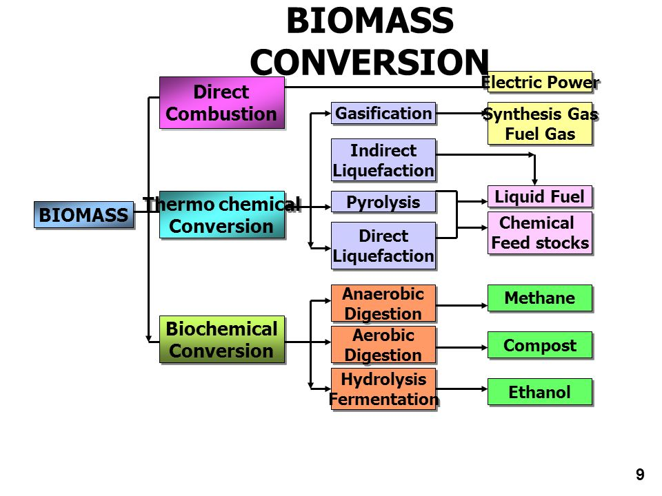 BIOMASS CONVERSION Direct Combustion Direct Combustion Biochemical Conversion Biochemical Conversion Thermo chemical Conversion Thermo chemical Conver