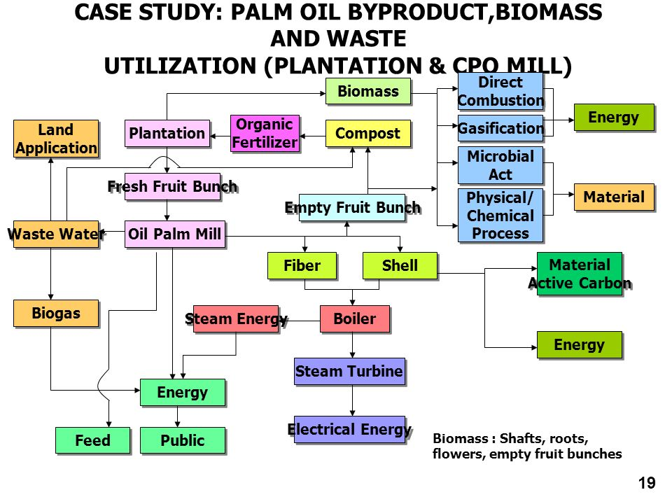 CASE STUDY: PALM OIL BYPRODUCT,BIOMASS AND WASTE UTILIZATION (PLANTATION & CPO MILL) Land Application Land Application Biogas Waste Water Public Feed