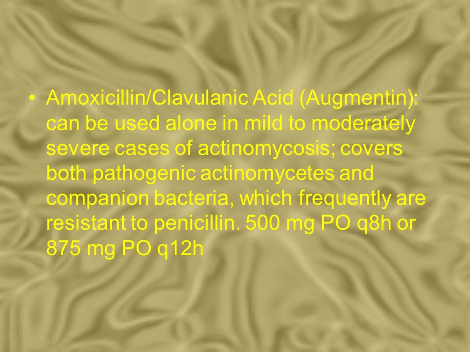 Amoxicillin/Clavulanic Acid (Augmentin): can be used alone in mild to moderately severe cases of actinomycosis; covers both pathogenic actinomycetes a