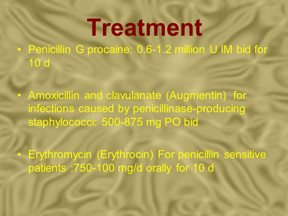 Treatment Penicillin G procaine: 0.6-1.2 million U IM bid for 10 d Amoxicillin and clavulanate (Augmentin) for infections caused by penicillinase-prod