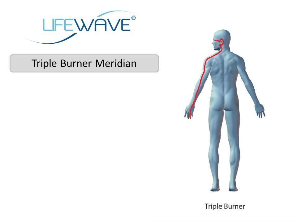 Triple Burner Meridian