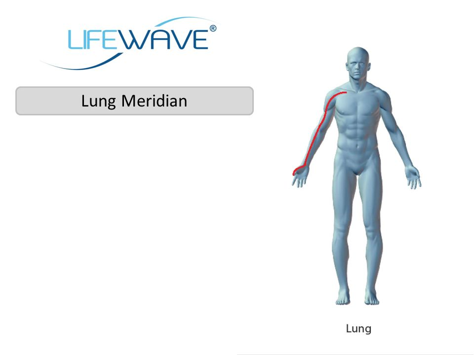 Lung Meridian