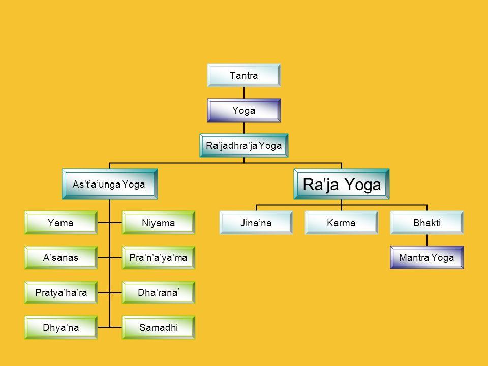 Tantra Yoga Rajadhraja Yoga Astaunga Yoga YamaNiyama AsanasPranayama PratyaharaDharana DhyanaSamadhi Raja Yoga JinanaKarmaBhakti Mantra Yoga