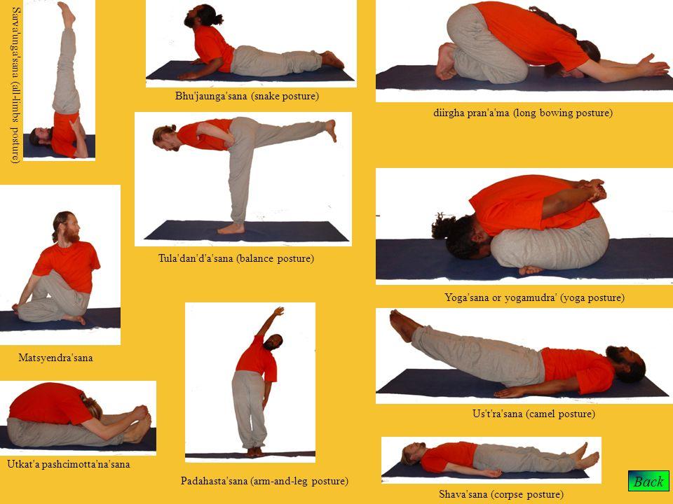 Back Tula'dan'd'a'sana (balance posture) Sarva'unga'sana (all-limbs posture) Us't'ra'sana (camel posture) Shava'sana (corpse posture) Padahasta'sana (