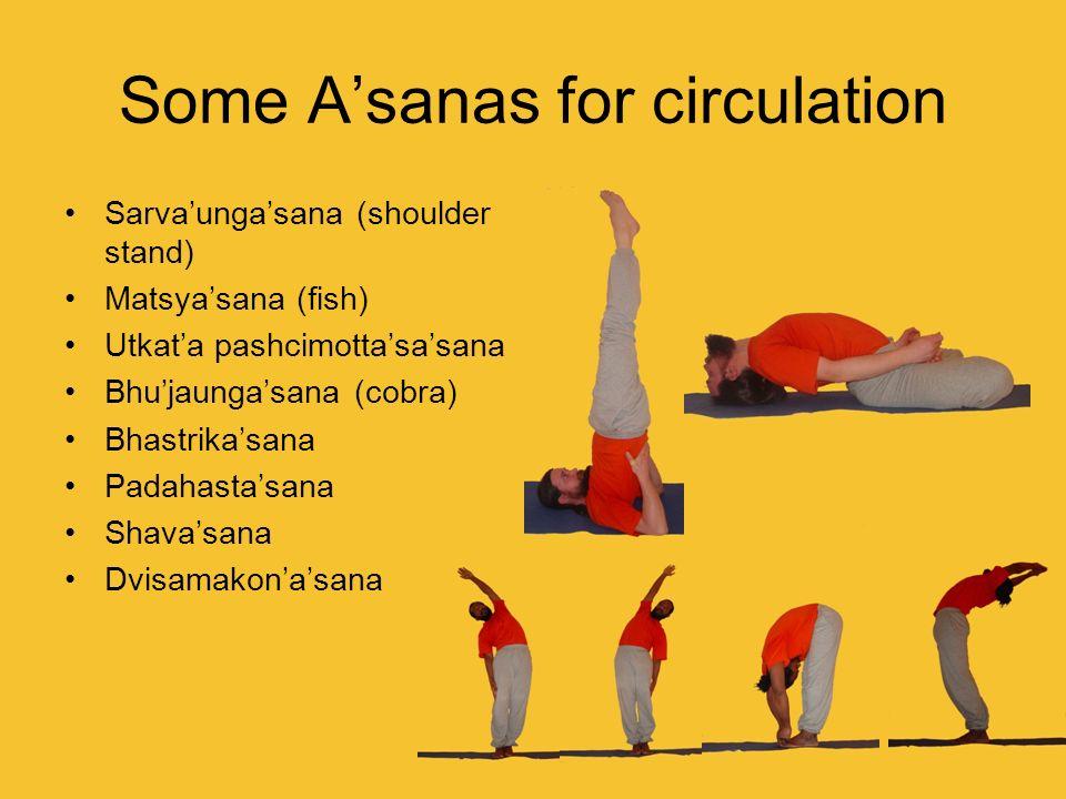 Some Asanas for circulation Sarvaungasana (shoulder stand) Matsyasana (fish) Utkata pashcimottasasana Bhujaungasana (cobra) Bhastrikasana Padahastasan