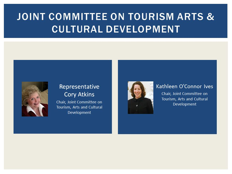 JOINT COMMITTEE ON TOURISM ARTS & CULTURAL DEVELOPMENT