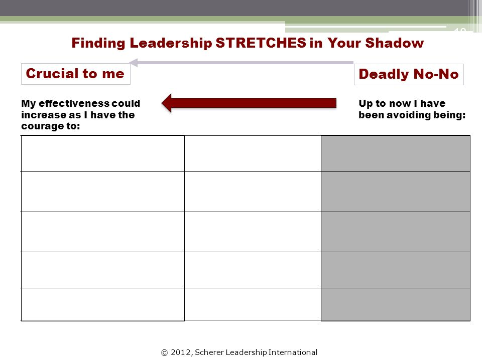 © 2012, Scherer Leadership International 18 Finding Leadership STRETCHES in Your Shadow Up to now I have been avoiding being: My effectiveness could increase as I have the courage to: Deadly No-No Crucial to me