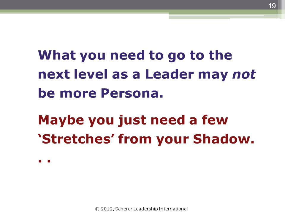 © 2012, Scherer Leadership International 19 What you need to go to the next level as a Leader may not be more Persona.