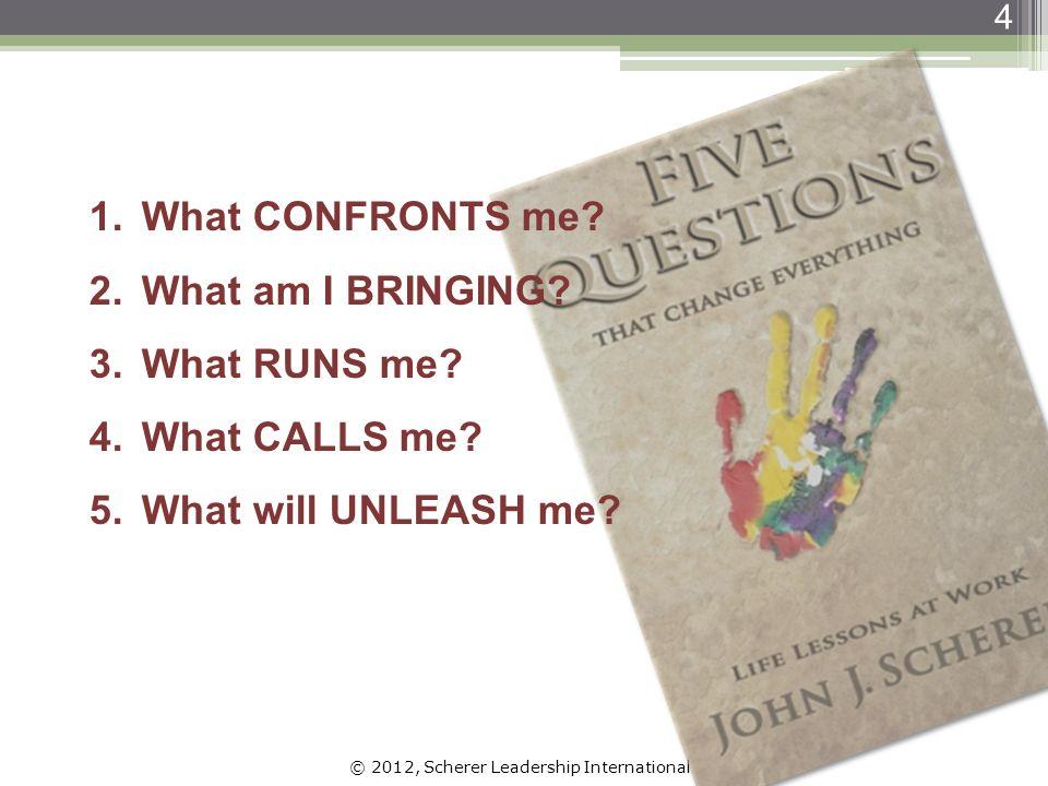 © 2012, Scherer Leadership International 15 PersonaShadow Benefits Fears Benefits Fears From Barry Johnson, Polarity Management