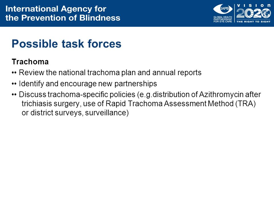 Possible task forces Trachoma Review the national trachoma plan and annual reports Identify and encourage new partnerships Discuss trachoma-specific p