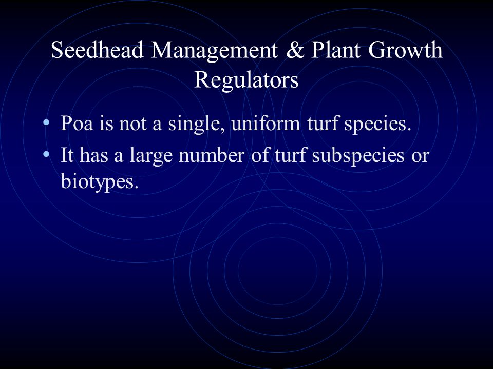 Fertility and Growth Regulators It is generally best to keep fertility levels somewhat higher on turf treated with growth regulators than on non- trea
