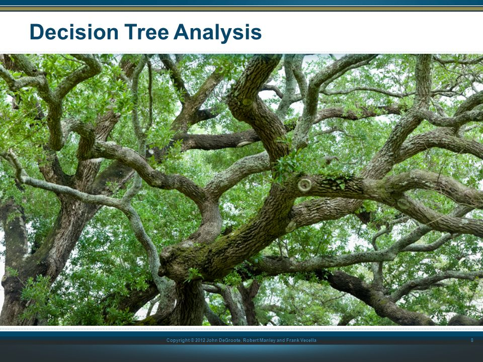 Copyright © 2012 John DeGroote, Robert Manley and Frank Vecella What Is a Decision Tree.