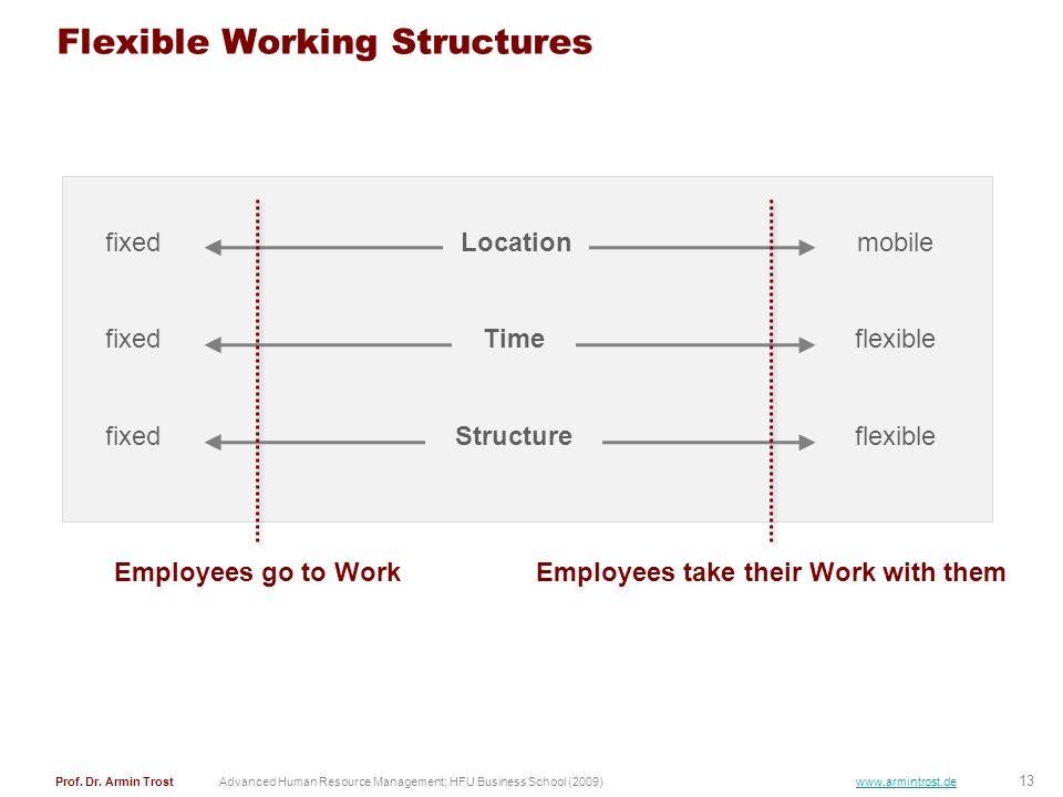 13 Prof. Dr. Armin TrostAdvanced Human Resource Management; HFU Business School (2009) www.armintrost.de Flexible Working Structures Locationfixedmobi