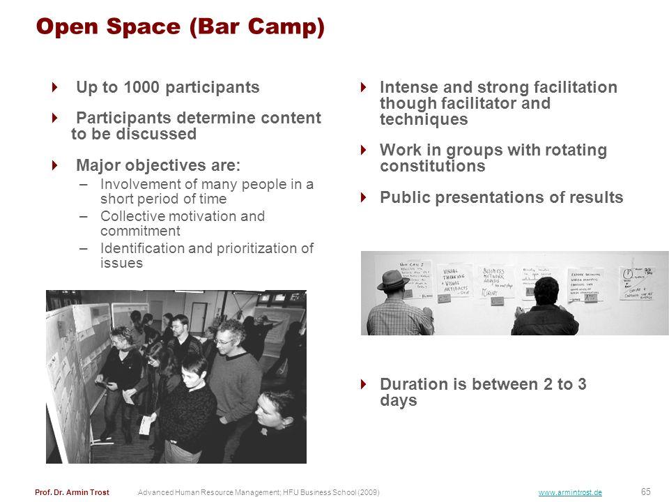65 Prof. Dr. Armin TrostAdvanced Human Resource Management; HFU Business School (2009) www.armintrost.de Open Space (Bar Camp) Up to 1000 participants